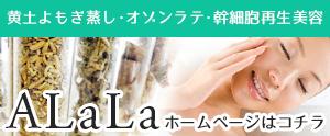 大阪,ミナミ,yosa,よもぎ蒸し,ヨモギ,漢方,体質改善,四ツ橋,北堀江